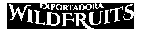 logo_texto